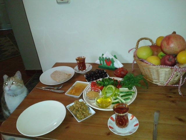 collectif-bouffe-bombes-istanbul-02