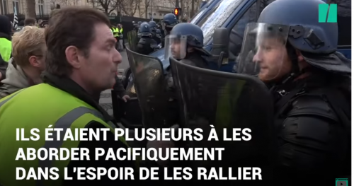 Gilets Jaunes (Yellow Vests) hail French pigs